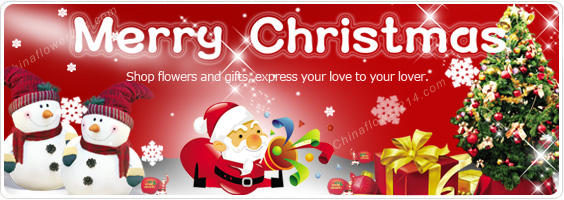 Send Christmas Flowers,Gifts,Cakes to China