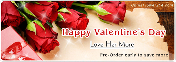 Send Valentine`s Day Flowers,Gifts,Cakes to China