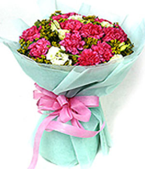 Festive Wishes,Carnations