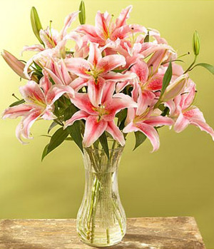 9 Pink Lilies