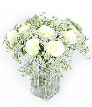 magnificent white roses