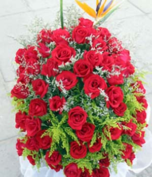 red roses and bird-of-paradise flower to China