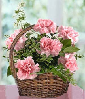 Carnations basket for mother