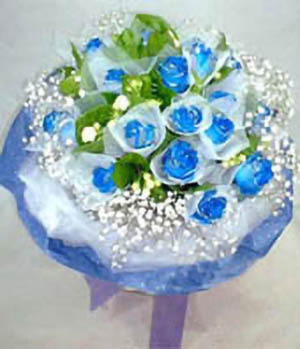 Blue Valentine-Send bule roses to China