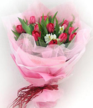 16 Pink Tulips