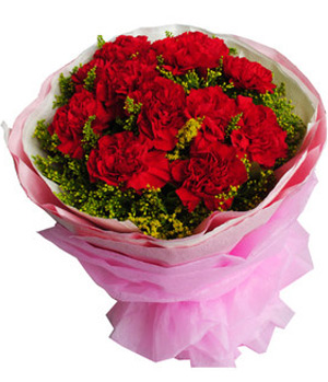 11 Red Carnations