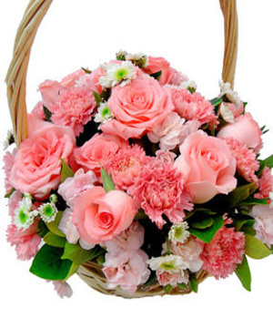 Carnations Basket