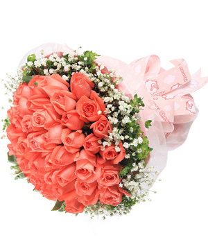 33 premium pink roses - China flower delivery