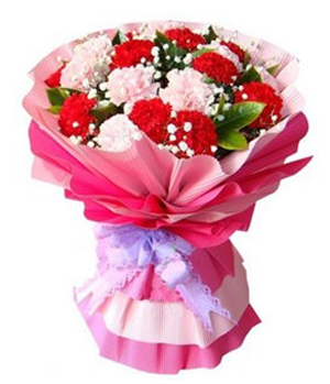 Send Flowers China - Carnation for mother