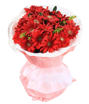 Flower China Delivery - 18 red gerberas