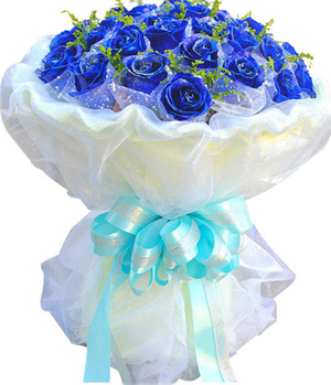 China Flower Delivery - 33 Blue Rose