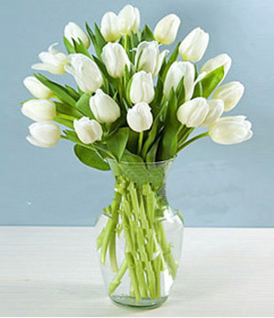 19 white tulips in a vase