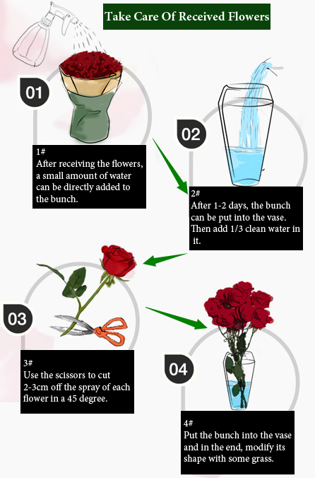 How To Take Care Of Received Flowers China Flower 214