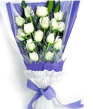 Carnival Love-China Flowers Delivery