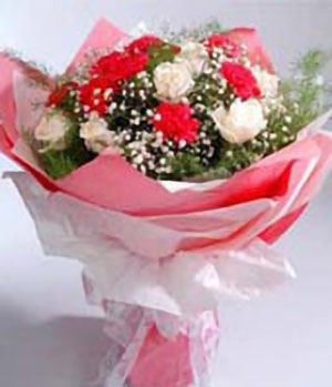 Have you-China Flower Delivery Shop