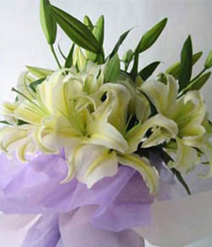 Deeply blessings-Chinese online florist