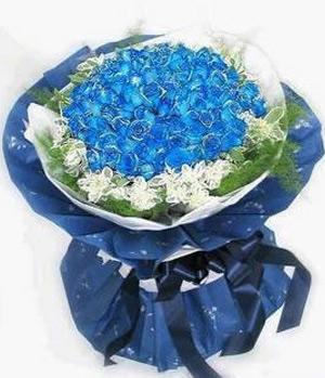 Blue Charm - 99 Blue Roses China