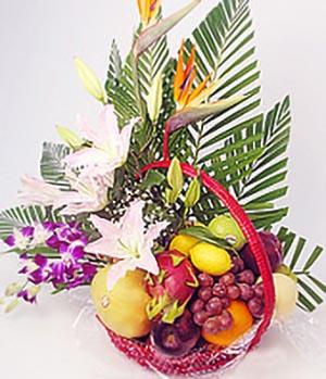 Happy life-Chinese Fruit