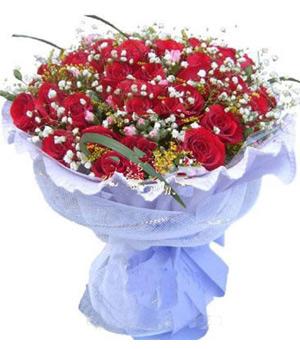 33 A grade roses
