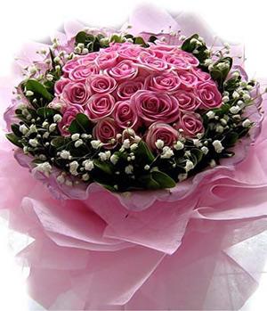 19 Mary Roses