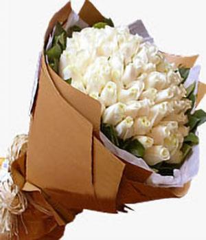 66 white roses