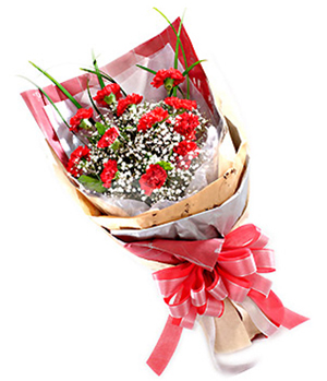 send flowers to MaMa in China, 12 red carnations