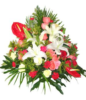 Greetings Flowers Basket