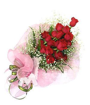 19 premium red roses