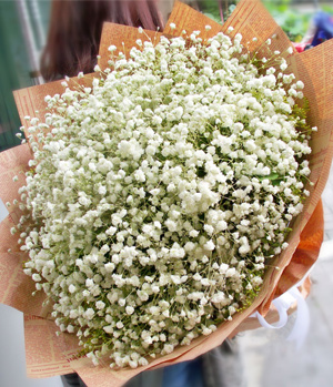 Baby's Breath Bouquet - Flowers delivery China