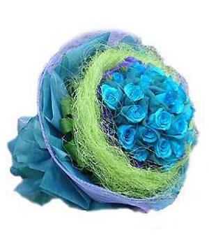 24 blue roses deliver