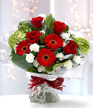 China Chirstmas Flowers Delivery