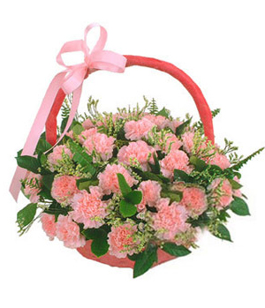 China Flowers - 36 pink carnations basket