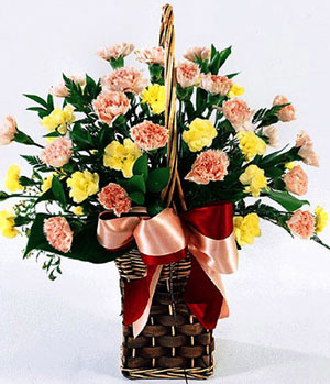 China Flower Delivery - Carnations Basket