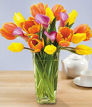 Tulip in a vase delivered