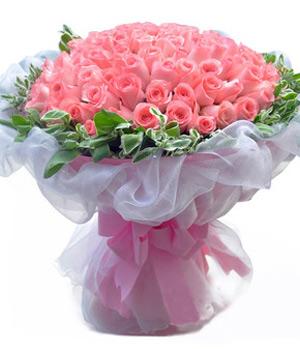 Premium pink roses 99