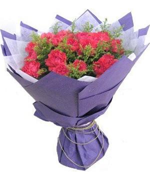 19 pink carnations bouquet