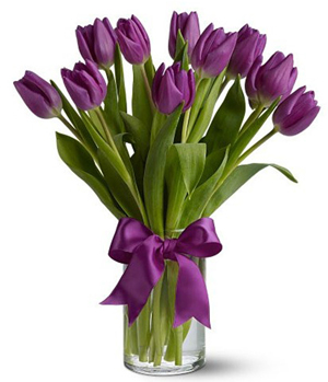 Purple Tulips to China