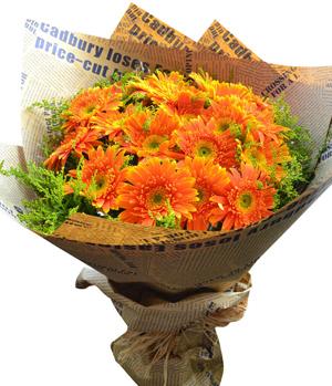 19 Gerbera Hand Bouquet