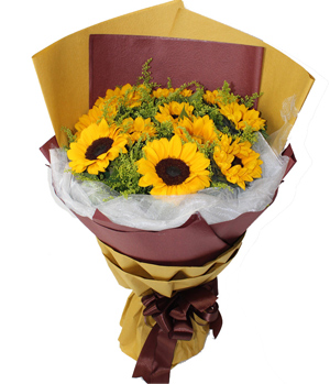 Sundflower Delivery in China