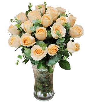 Delicate Fragrance Floral